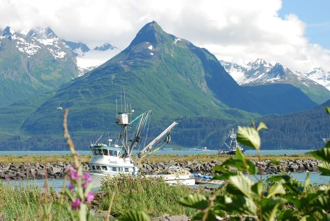 Our View from Site #8 at BearPaw Campground in Valdez