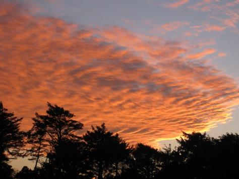 SunsetNewport